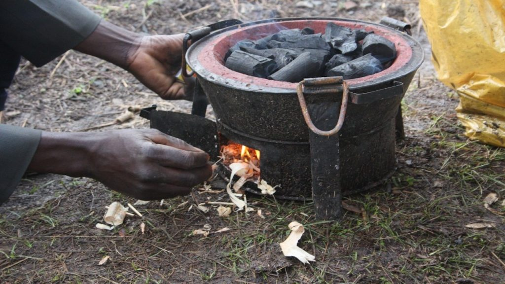 Charcoal for household